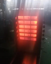 China Custom Shawarma Kebab Machine SUS304 , LPG / NG 6 Burners BBQ Doner Kebab Equipment supplier